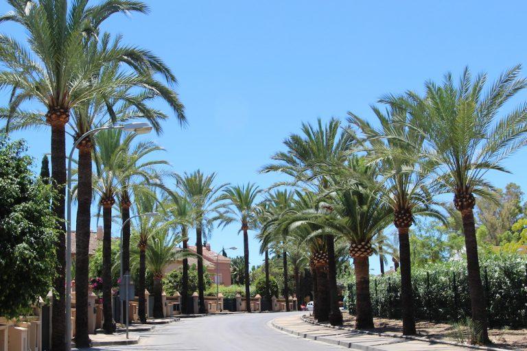 villa in Guadalmina